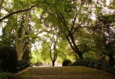 Busca maison des annes 50 de 334 mtres carrs habitables avec jardin 6 chambres beaux volumes lumineuseparcelle denviron 450 mtres carrsbelle adresse environnement