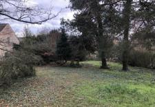 Terrain constructible denviron 1000 M2 du relief un environnement prserv et trs valorisant de vieux arbres tres rare proximit de lecole Polytechnique et Paris Saclay